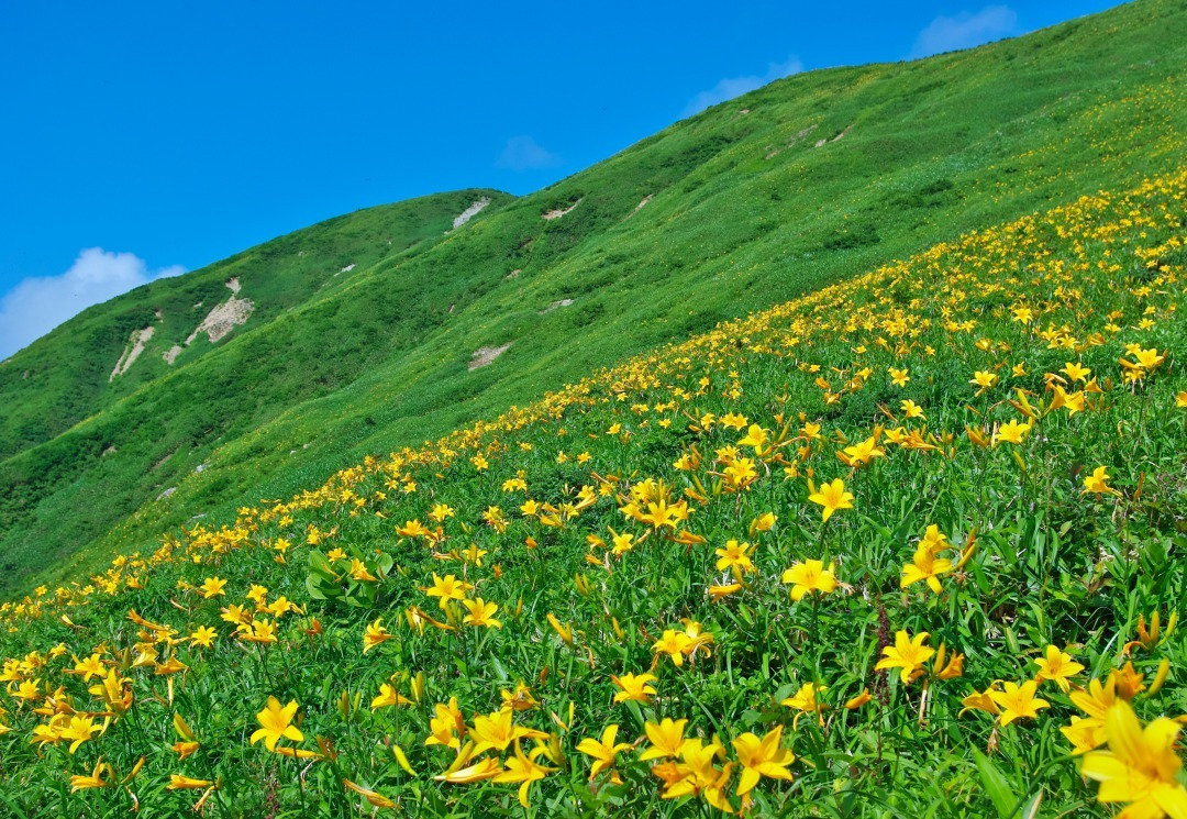 ss0714-2011_0852流石山
