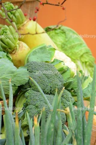 6665077 野菜いろいろ