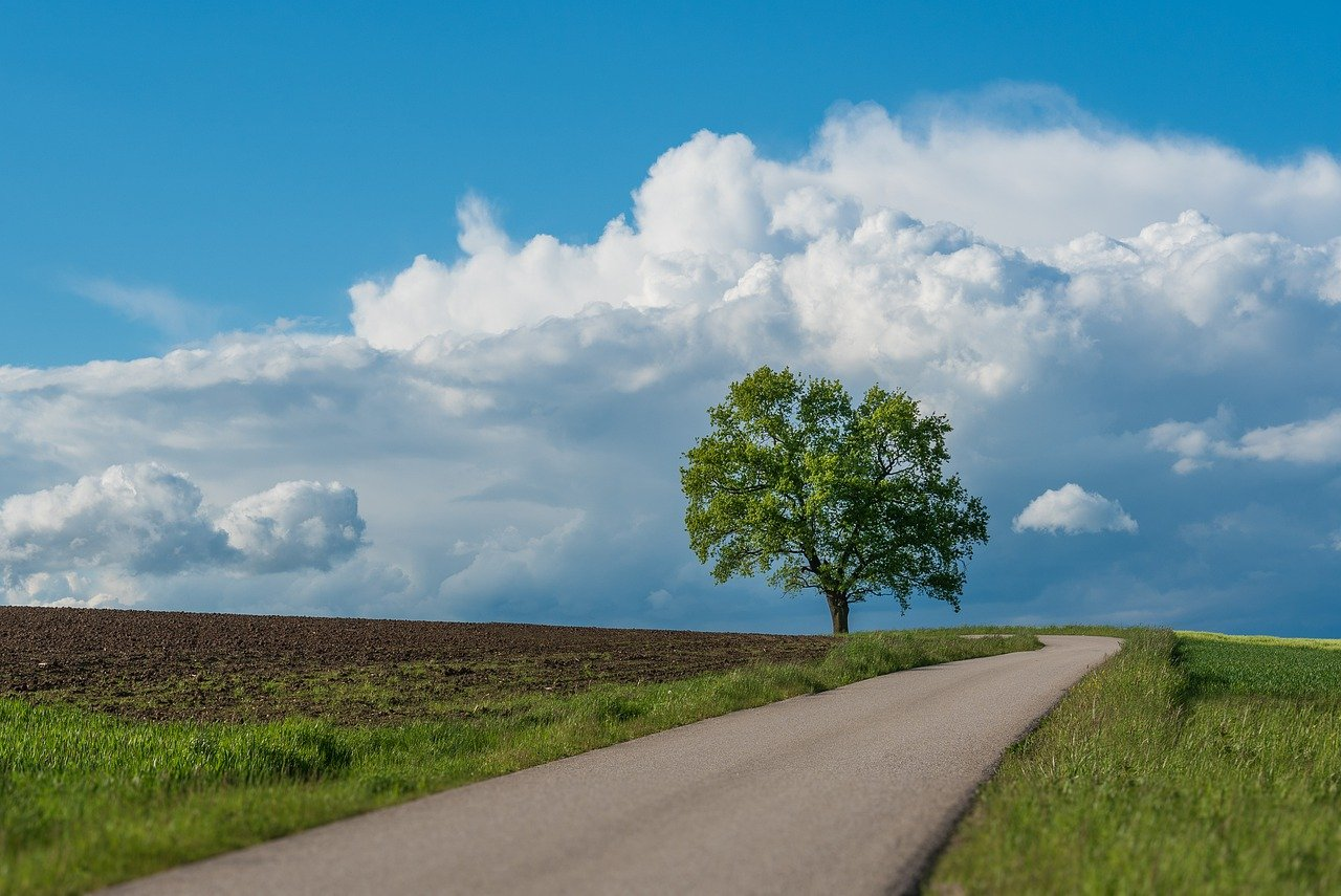 目先の損得に囚われず長期的目標を by天空オフィシャルブログ所蔵画像