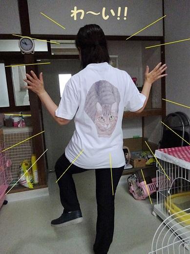 チビタTシャツ2