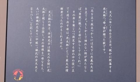 s-21年2月24日 (10)