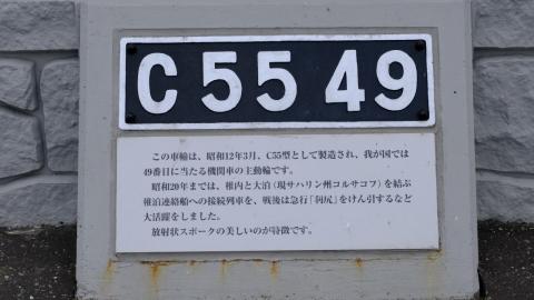 s-21年7月19日 (18)