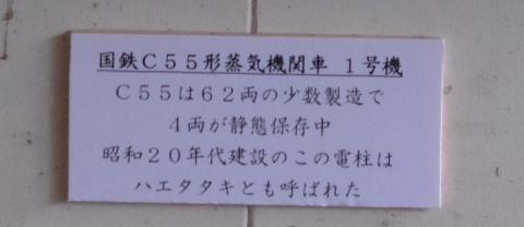 s-21年8月19日 (21)