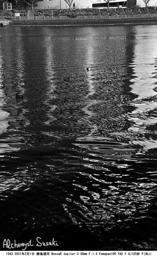 勝島運河1342-22 Ⅱ