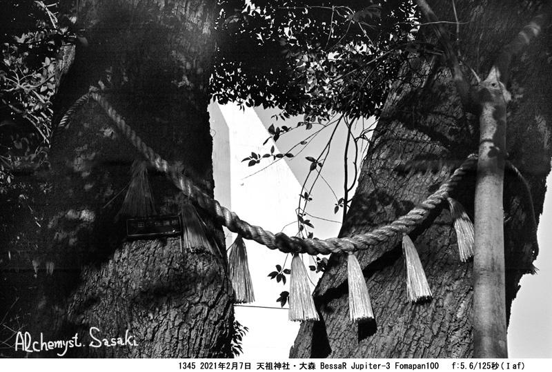 大森の神社仏閣1345-18