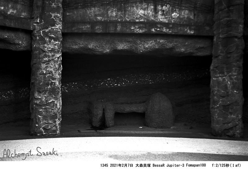 大森貝塚1345-34