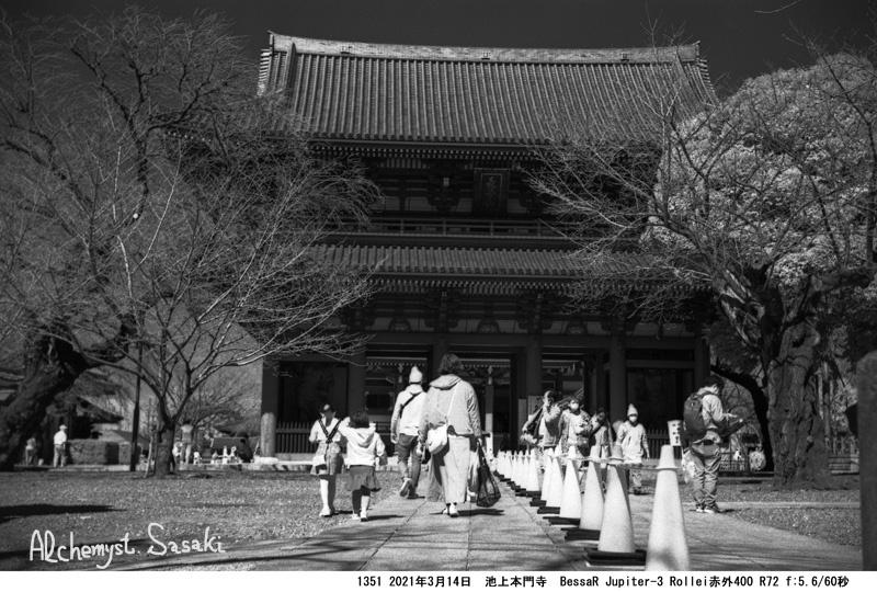 本門寺1351-15