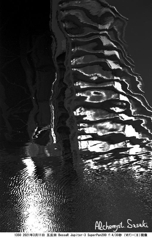 水辺の光景1350-12