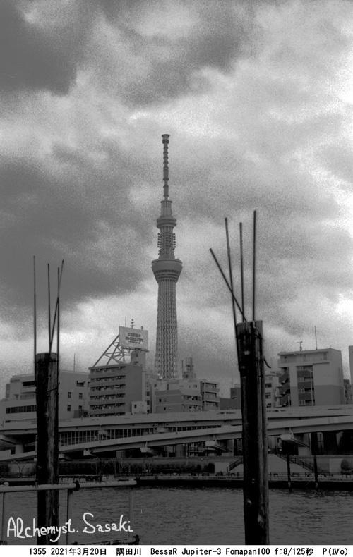 墨田川1355-12 Ⅱ