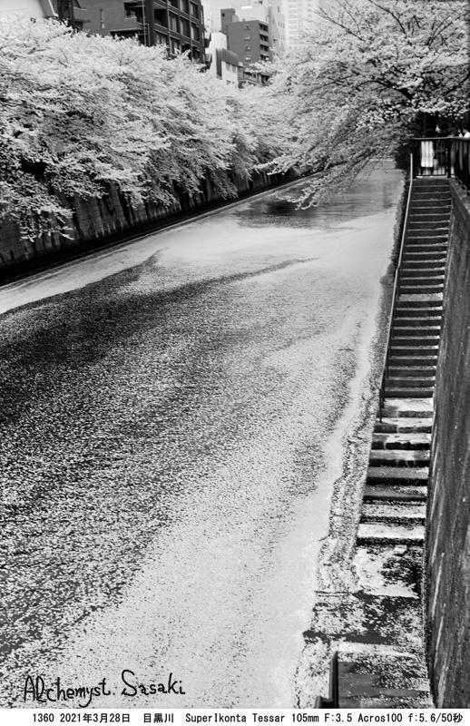 3月28日・中里橋1360-6