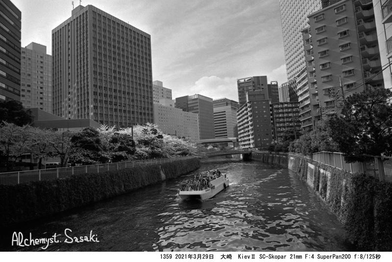 3月29日大崎・目黒川1359-35