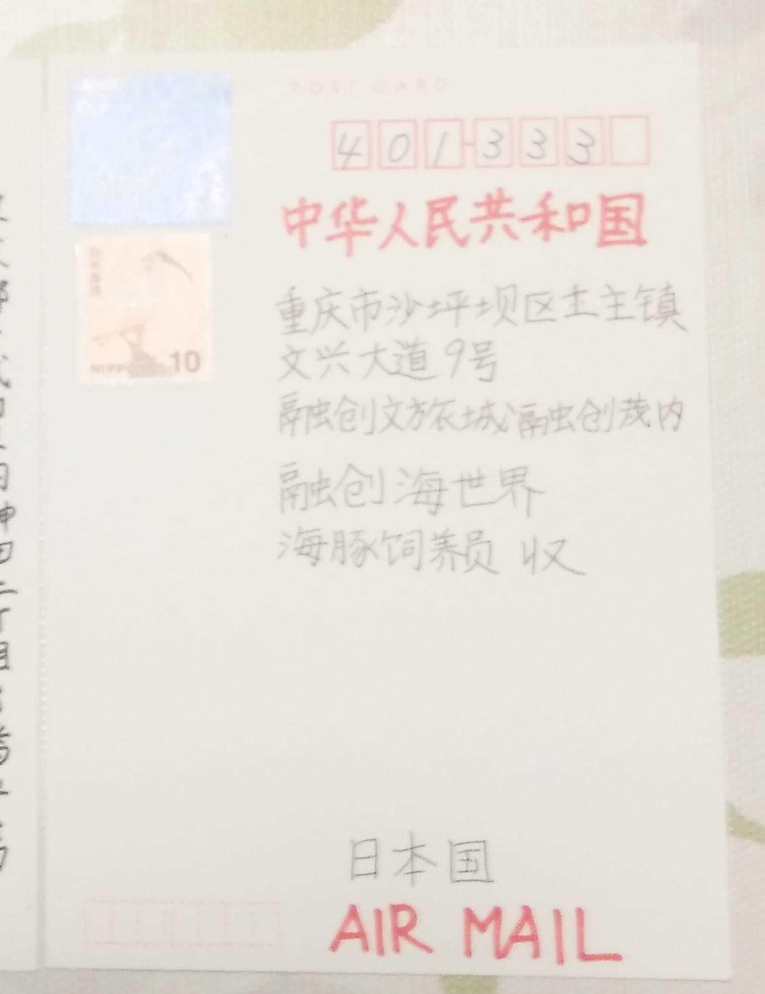 chinanico2.jpg