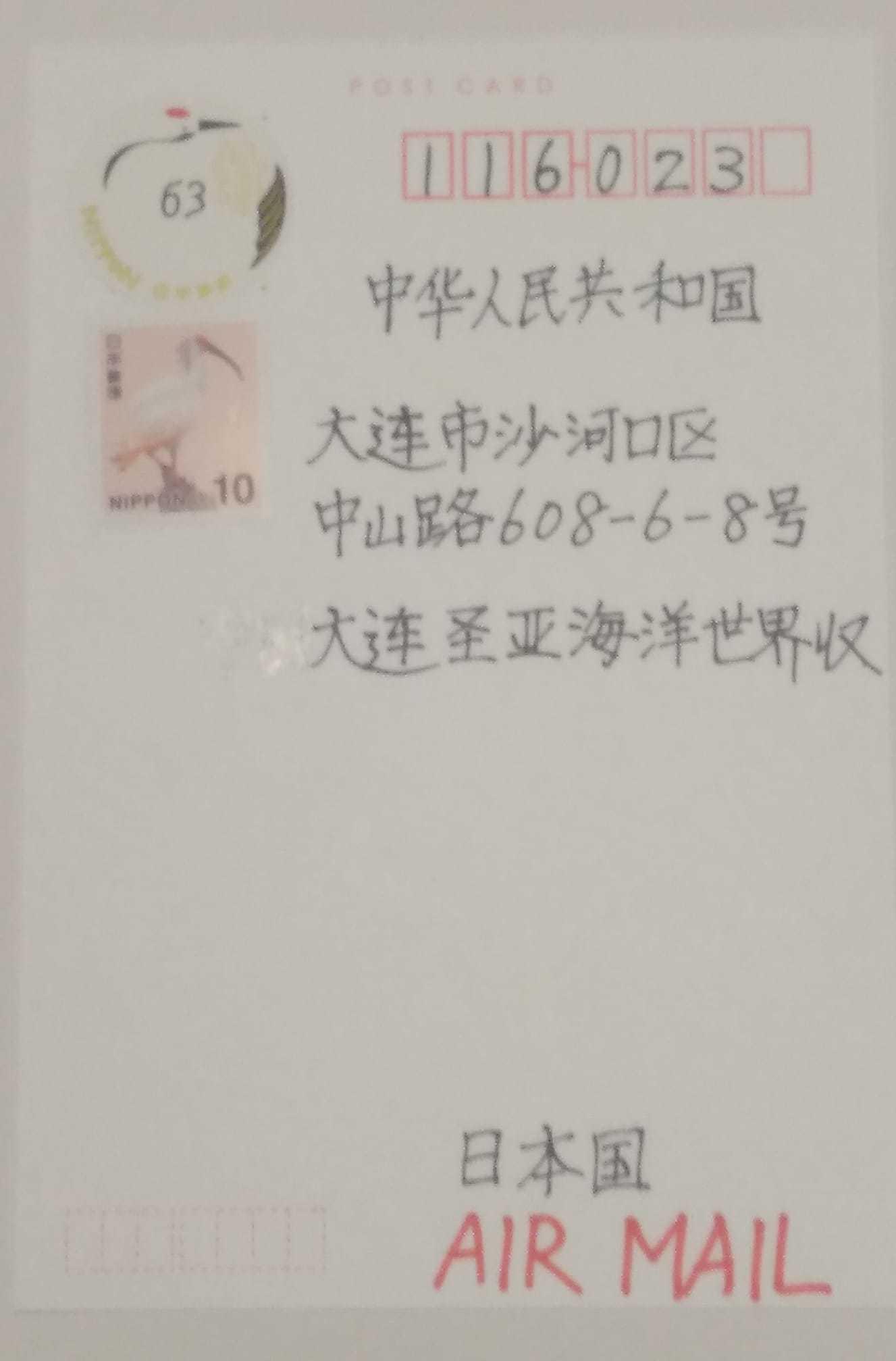 chinanico3.jpg
