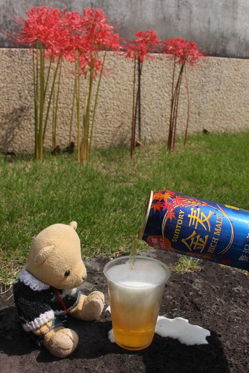 彼岸花の前で金麦を注ぐ 駿府城公園 210915
