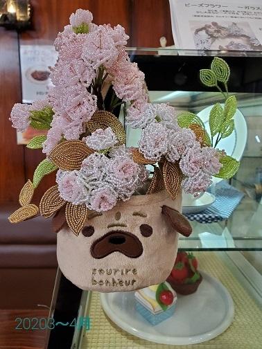 喫茶店のわんこに入れていた奈良八重桜
