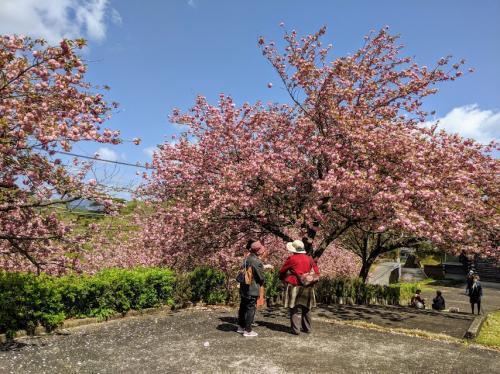 萩尾公園5