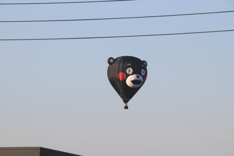 くまモン(型気球)