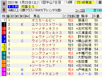 21初富士S