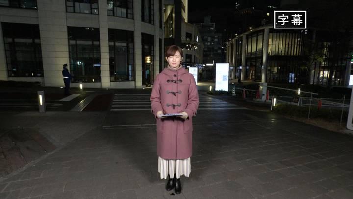 2020年12月26日新井恵理那の画像21枚目