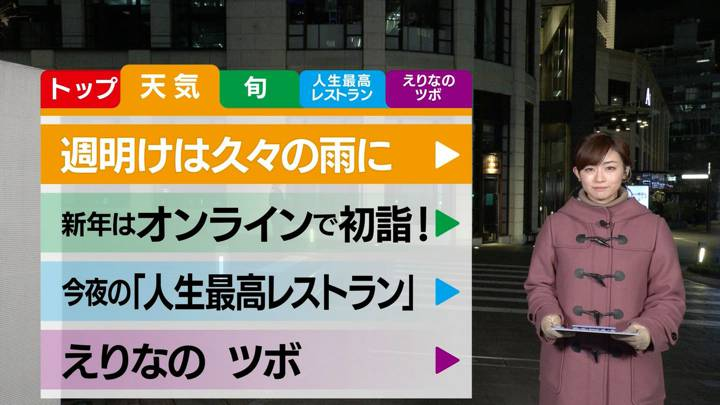 2020年12月26日新井恵理那の画像23枚目