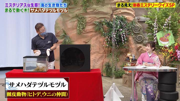 2021年01月11日岩田絵里奈の画像12枚目
