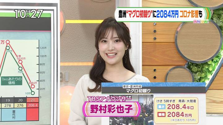 2021年01月05日野村彩也子の画像12枚目