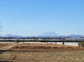 20210120 yakuyokedango-32