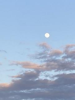 20210127 moon-11