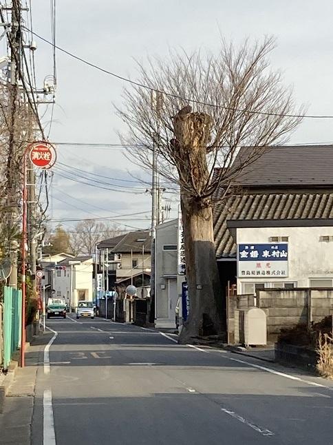 20210210 toshimaya-11