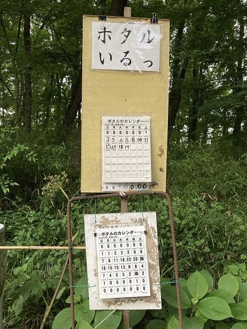 20210603 kiyose_seseragi-12