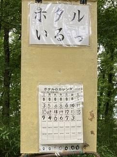 20210612 kiyoseseseragi-12