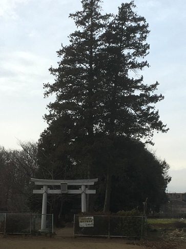 akitsu-kiyose1801008-36.jpg