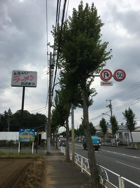 chuka-wakamatsu26.jpg