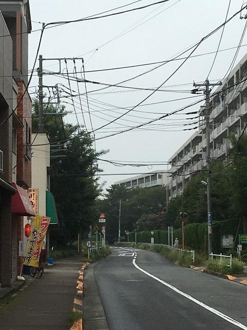 kawashimaya41.jpg