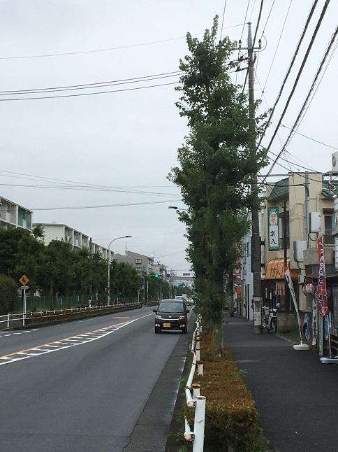 kyohachi31.jpg