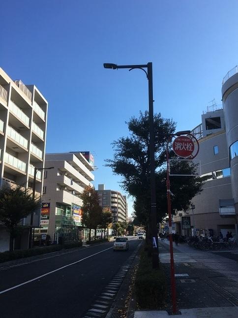 shino42.jpg