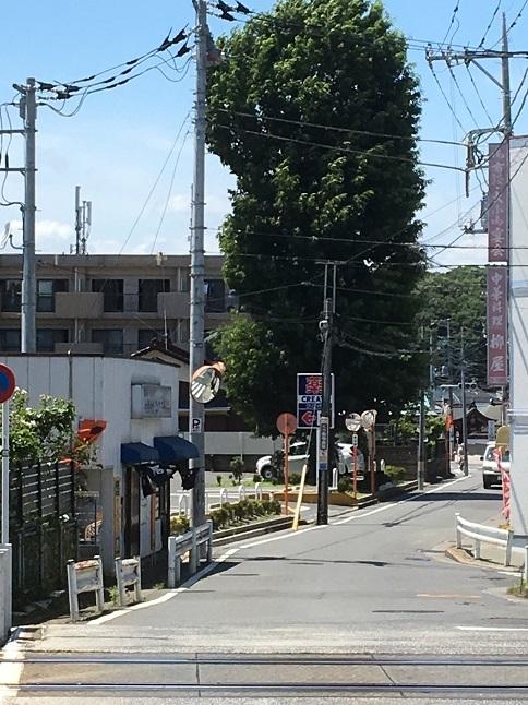 takeuchi21.jpg