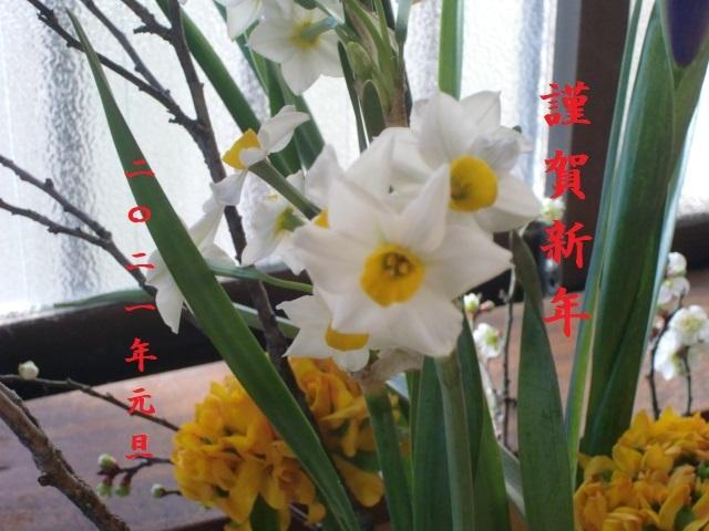 CIMG0019_202101011944137c9.jpg