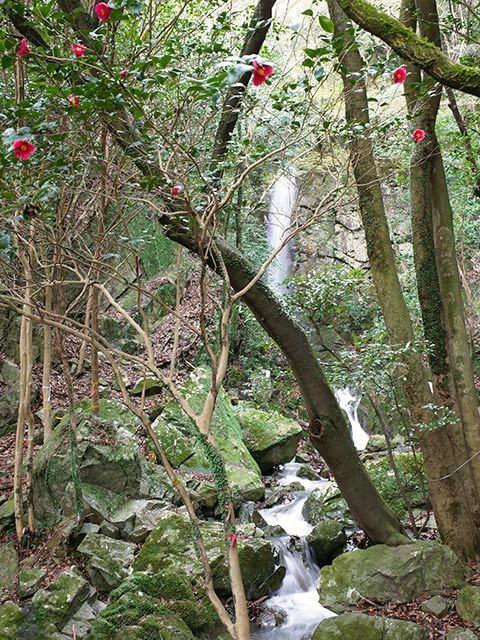 竜仙の滝03