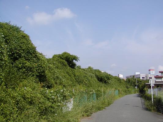 09-8-15浜本線跡 (2)c