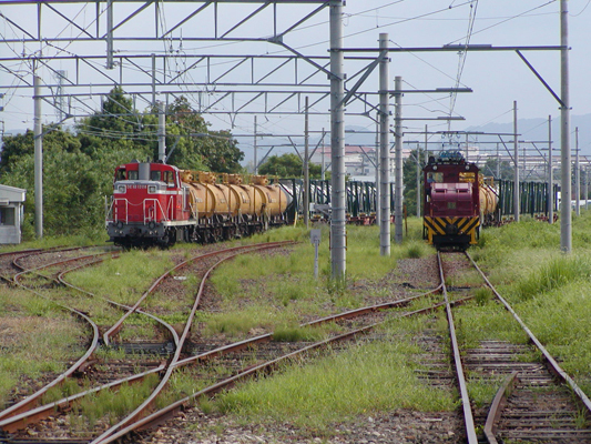 2009-8-22仮屋川 (3)c