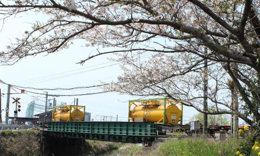 20120408桜1152レ (31)c