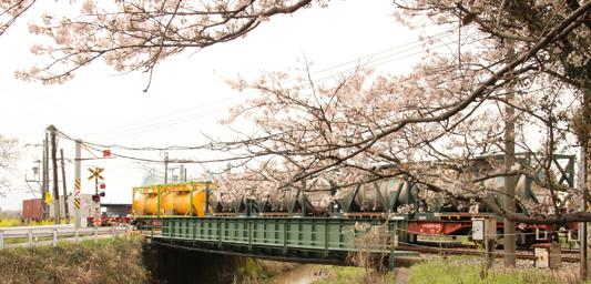 20140330桜1152レ (62)c
