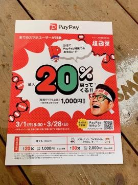 pay_1380.jpg