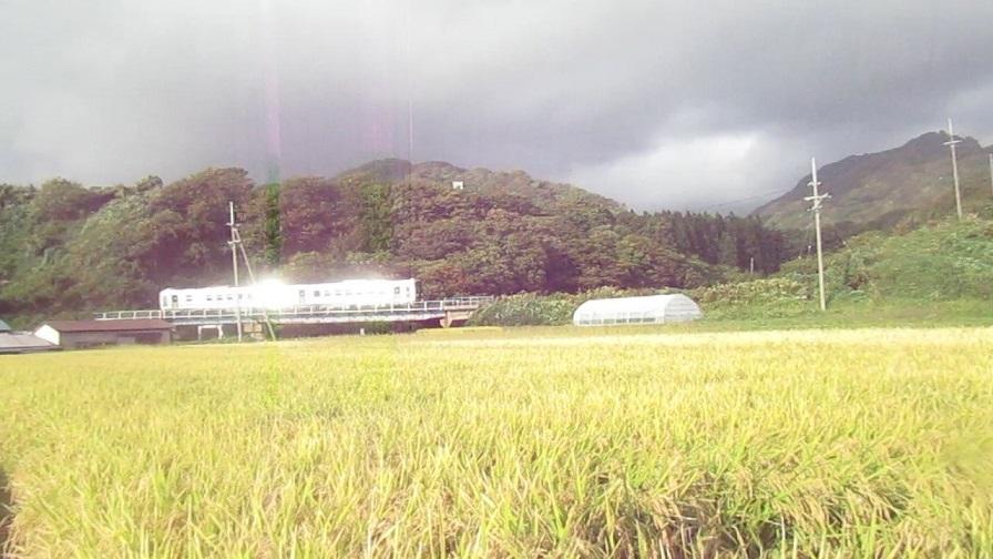 泊川鉄橋から秋の田んぼ_Moment