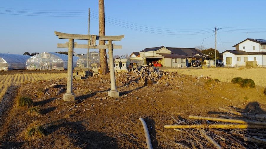 下欠町の一本松の稲荷塚05