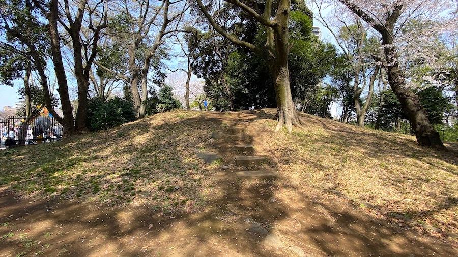 北区 桜と飛鳥山1号墳1