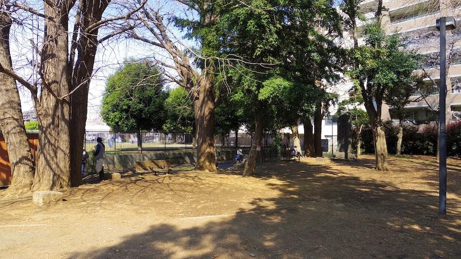北区 021 十条台小学校横穴墓2