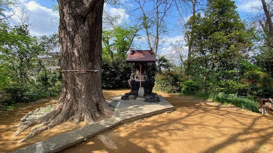 北区 若宮八幡神社3