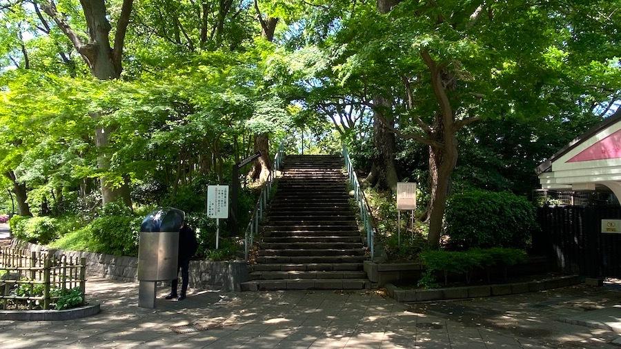 台東区「摺鉢山古墳とその周辺」4